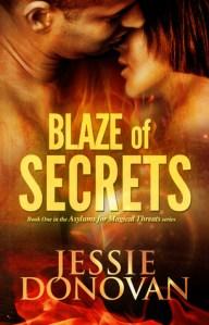 Review: Blaze of Secrets by Jessie Donovan