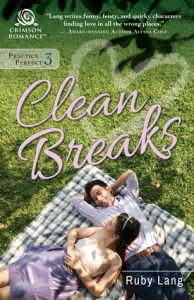 Review: Clean Breaks by Ruby Lang