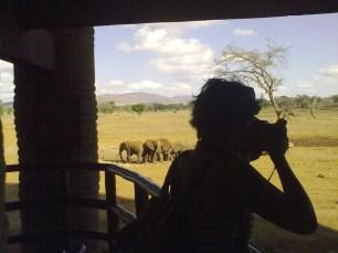 A caccia di elefanti, Tsavo