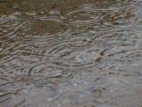 雨降りの日には雨を。。。