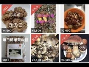 無許可で森林からとってきたきのこや山菜がメルカリで販売