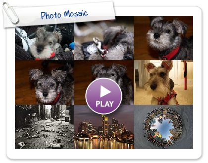 Click to play Photo Mosaic