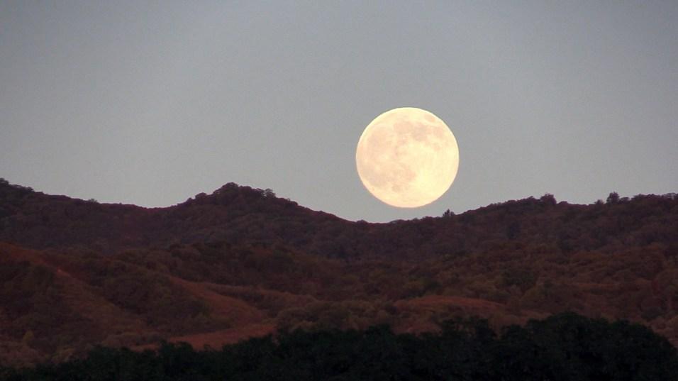 "moon says, ""i'm always super"""