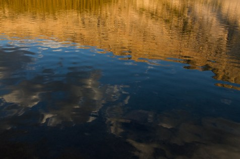 young lake reflection