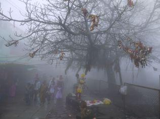 Fog on the mountain peak/ Nebel auf der Spitze des Berges