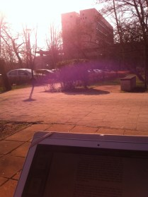 Studying and enjoying the sun outside