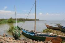 Pretty boats