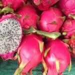 ピタヤと夏野菜の揚げ浸し ドラゴンフルーツのレシピ あさイチで紹介