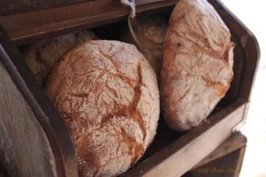 6050 red acre sd16 bread