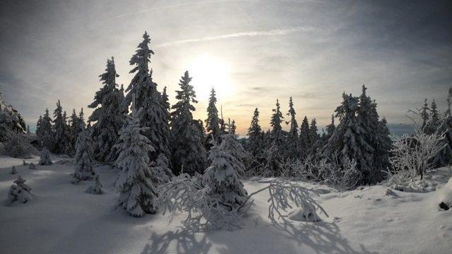 smileyioana.com | Winter Wonderland Photographer Flo
