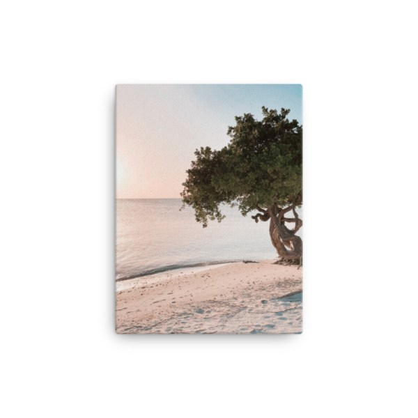 smieyioana.com | Caribbean Divi Tree Printed Canvas - Sample