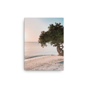 smieyioana.com | Caribbean Divi Tree Printed Canvas - Sample