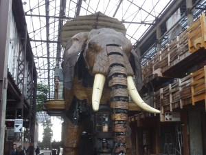 Le fameux éléphant !!!
