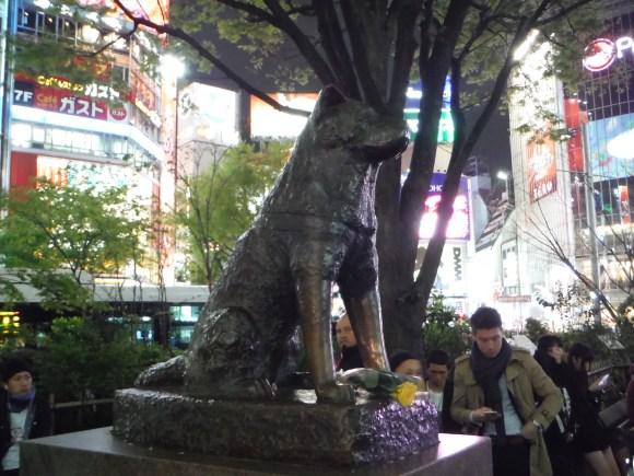 Toujours à Shibuya, la célèbre staue d'Hachiki, un chien qui après la mort de son maîte continua durant dix ans à l'attendre tous les soirs à la sortie du métro