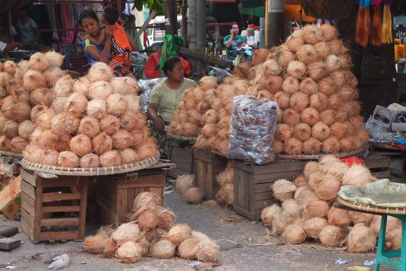 ... ou de noix de coco, on trouve de tout au marché Zegyo !