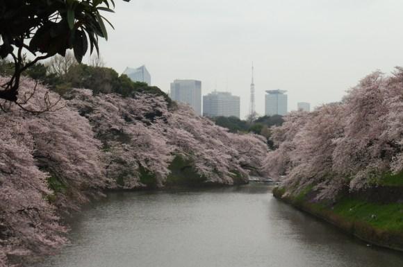 La rivière près du palais royal, le 2 avril