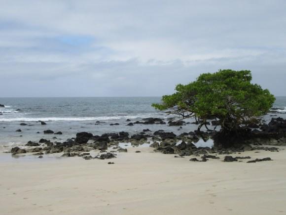 La Playita, ou petite plage ;-)