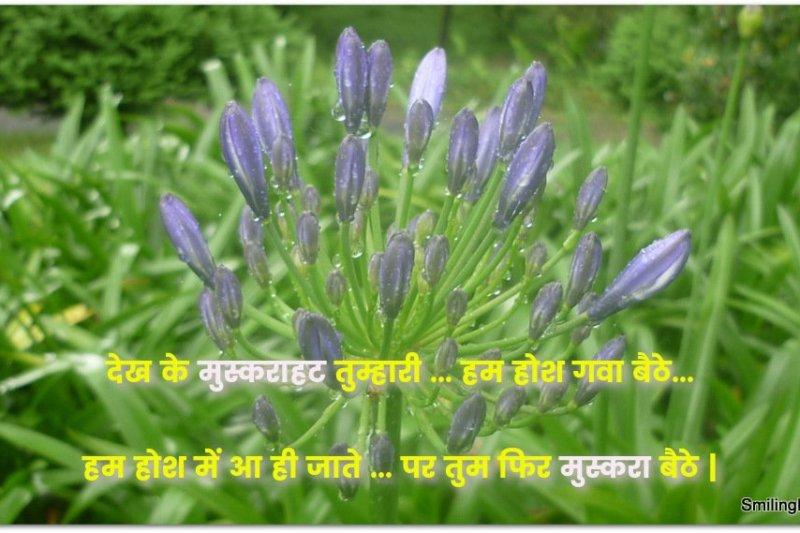 Love Sayings in Hindi