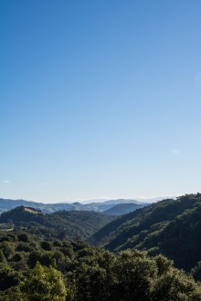 Sibley Volcanic Preserve - East Bay | Smiling in Sonoma