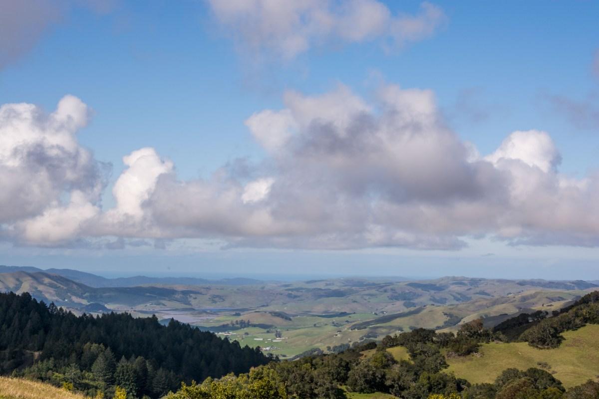 Big Rock Ridge Trail - Marin County   Smiling in Sonoma