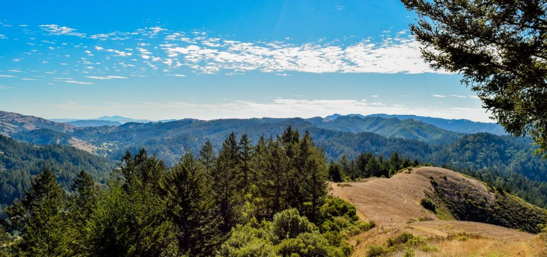 Barnabe Peak | Smiling in Sonoma