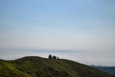 Pantoll to East Peak Mt Tam | Smiling in Sonoma