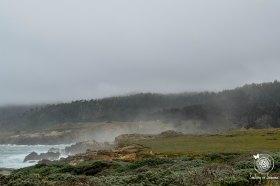 Stump Beach foggy day