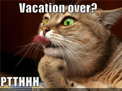 Vacation Over The Smirking Cat
