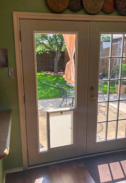 pet doors smith glass