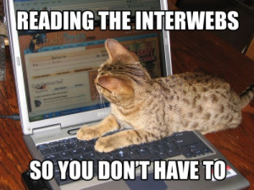 Reading_the_interwebs