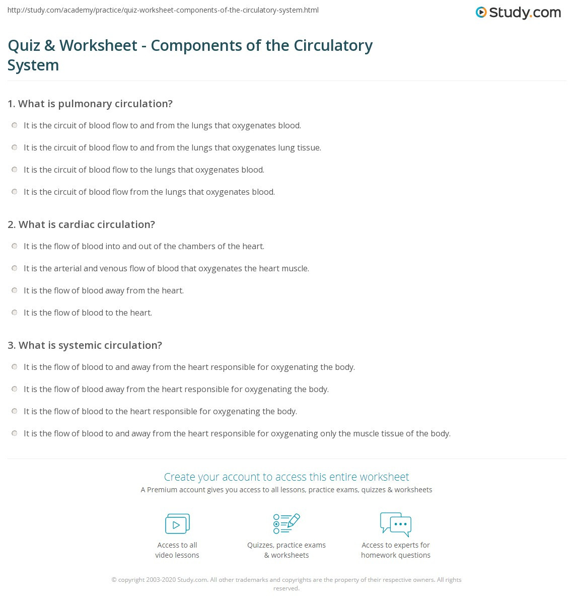 30 The Circulatory System Worksheet Answers