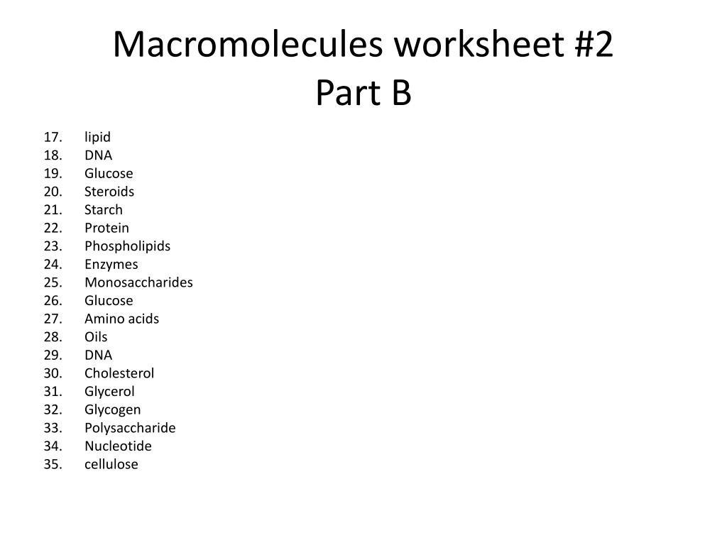 30 Biological Molecules Worksheet Answers