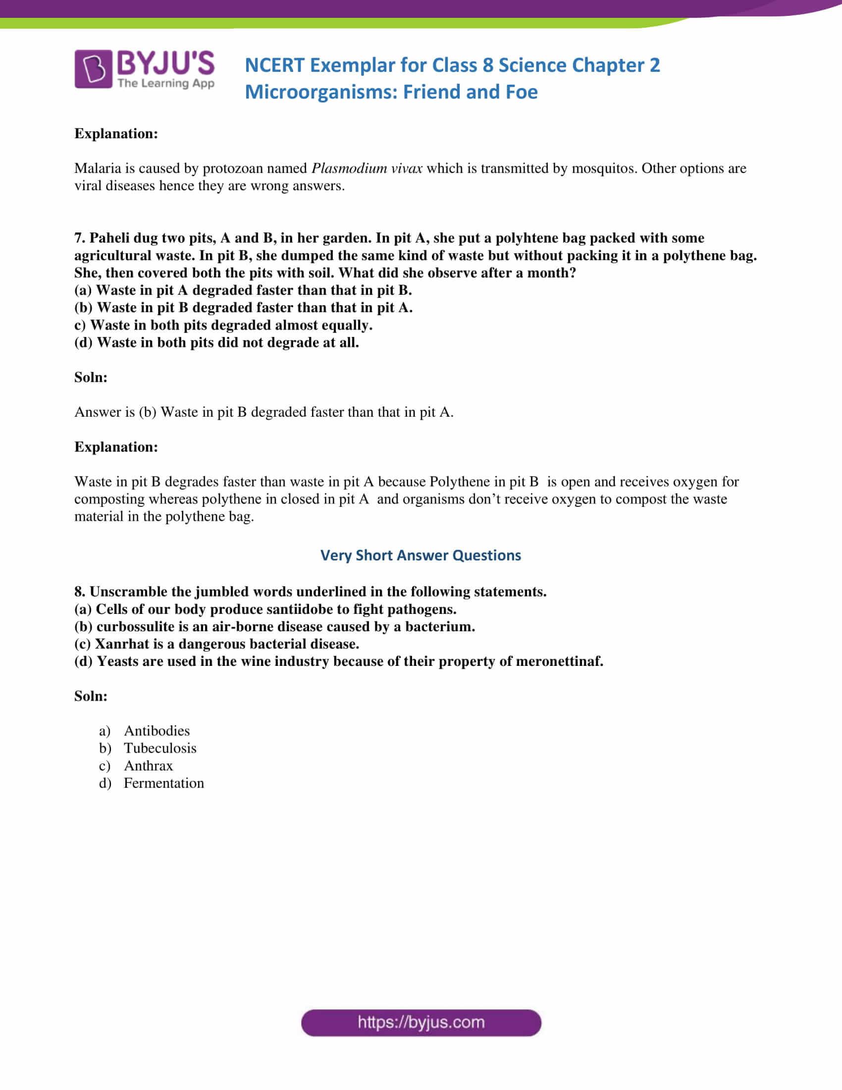 30 Characteristics Of Bacteria Worksheet
