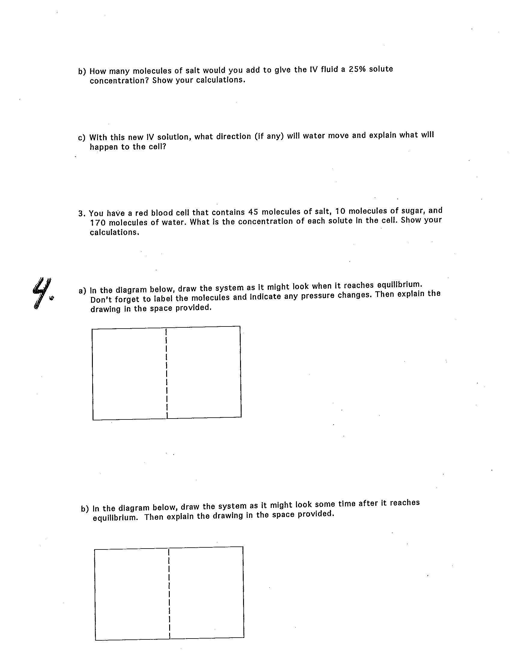 30 Diffusion And Osmosis Worksheet Answers