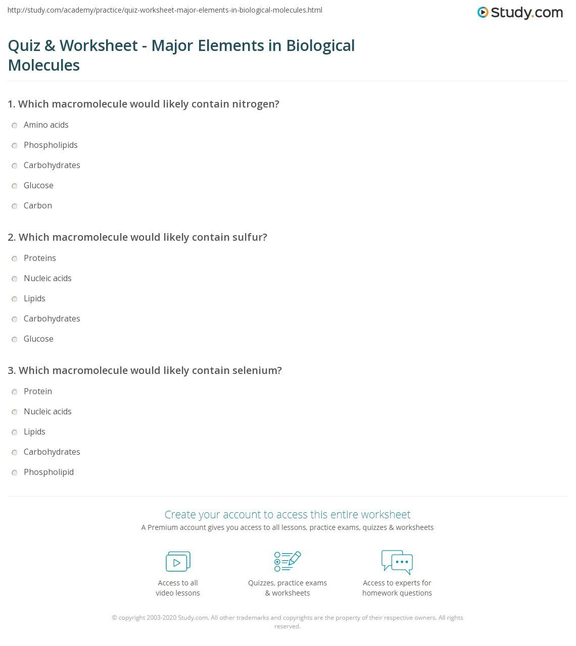 30 Macromolecules Worksheet Answer Key