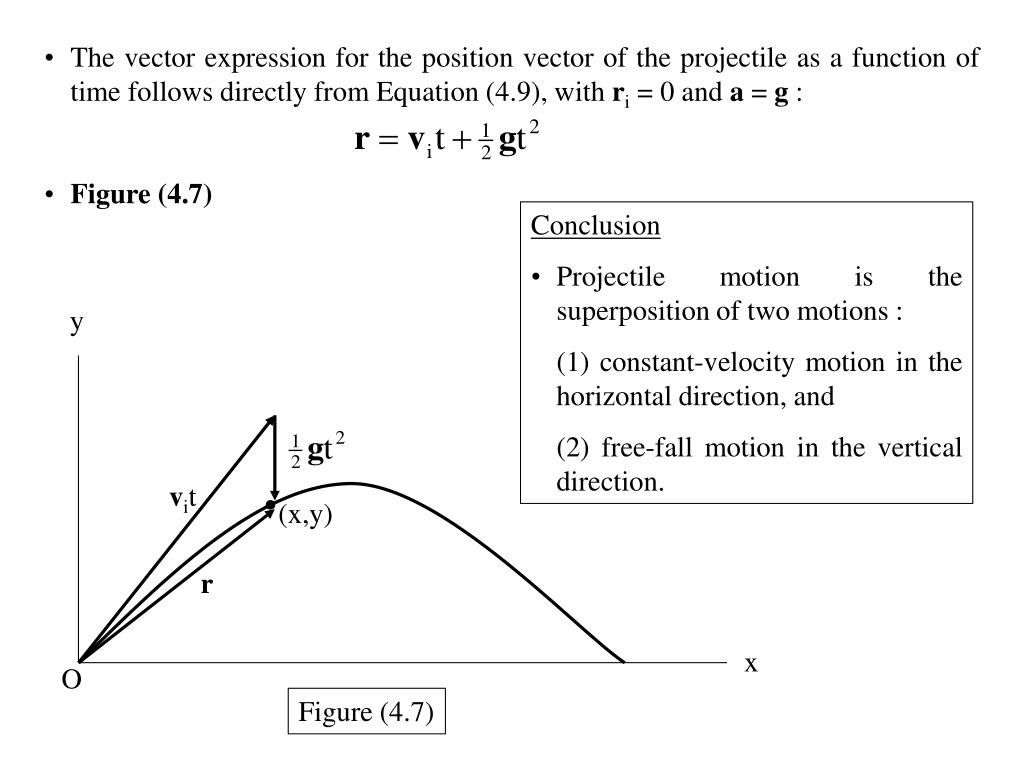 Projectile Motion Worksheet Answers Education Template