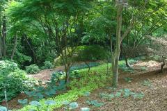 Points of Interest in the Gardens - Smith-Gilbert Gardens