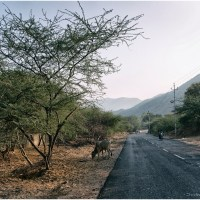 Pushkar to Ajmer Road