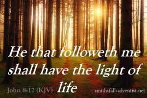 Light trough forest-bible-text