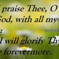 nature-backgground-psalm-86-verse-12