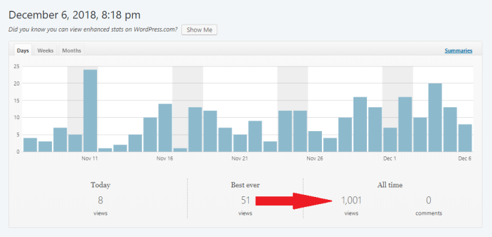 Illustration-chart-Site Stats-1000 hits
