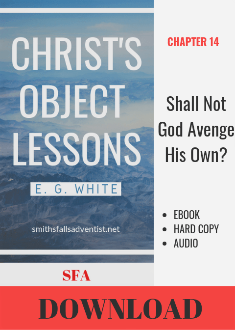 Illustration-Ebook Christ's Object Lessons - Shall Not God Avenge His Own, Chapter 14-text-logo