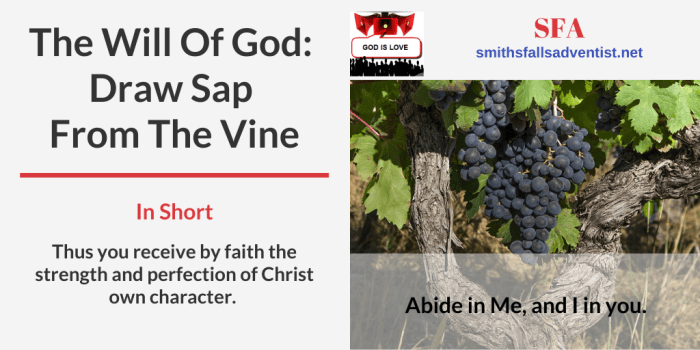 Illustration-Draw Sap From The Vine-vine-text-logo-Bible verse