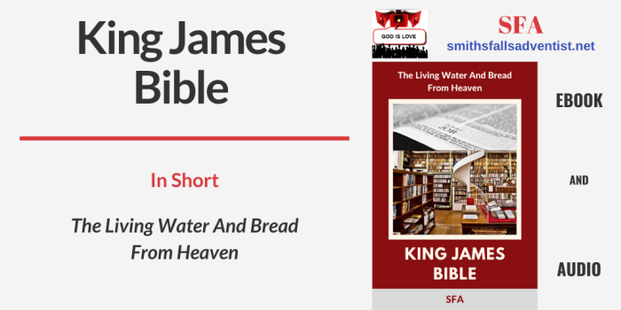 Illustration - Title - King James Bible - text - library