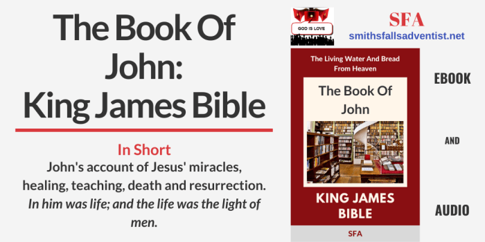 Illustration - Title - The Book Of John -Bible text