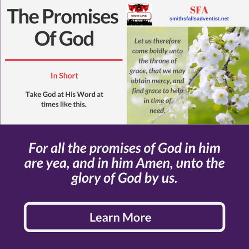 Illustration - background - blossom tree - text - Highlights - The Promises of God - Bible verse