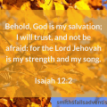 Illustration-background-yellow leaves-text-Bible verse