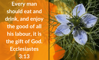 Illustration-landscape-yellow flowers-title-Laboring gift in Ecclesiastes 3 verse 13-text-Bible verse