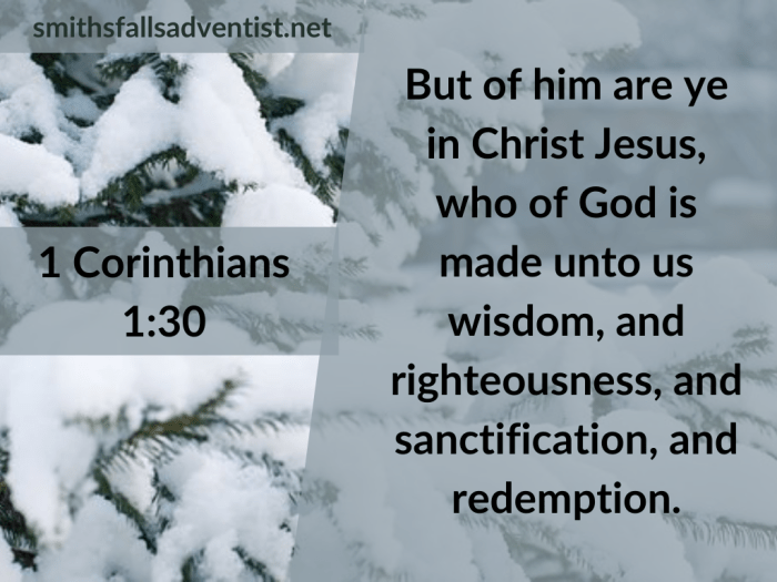 Illustration-background-evergreens covered with snow-title-But of Him you are in Christ Jesus in 1 Corinthians 1 verse 30-text-Bible verse