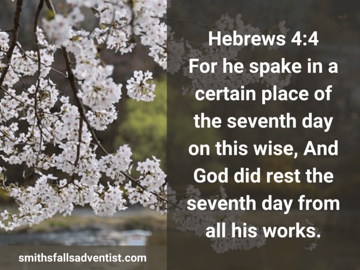 Illustration-background-blossomed cherry trees-title-God did rest the seventh day in Hebrews 4 verse 4-text-Bible verse.